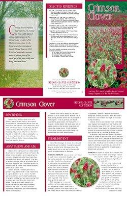 Oregon Clover Commission - Crimson Clover Tri-Fold Cover